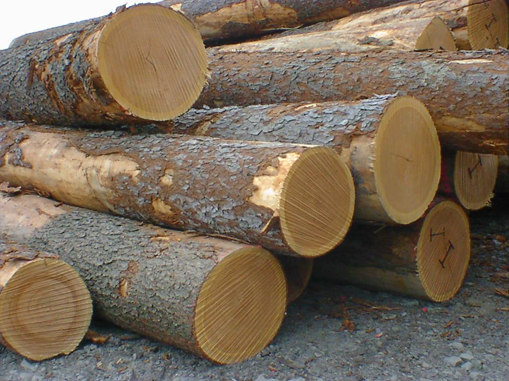 Decking | Timber Team International A/S